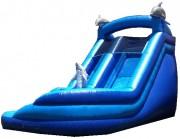 Mega-Blue-Dolphin-Water-Slide-3