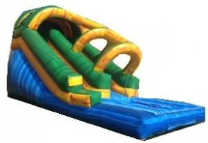 Mega Dolphin Water Slide - Wow Jumper Rental